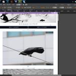 決定版Adobe museにおけるアンカー正しい配置